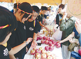 リンゴを販売する児童たち
