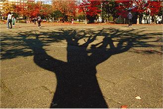 最優秀作品「晩秋の反町公園」