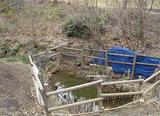 公園内にある源流の池