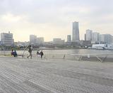 人気の大さん橋からの眺望