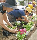 花を植える住民や児童たち