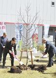 植樹する二宮区長と伊東委員長