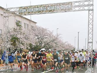 雨が降る中、満開の桜を背にスタートを切る選手たち