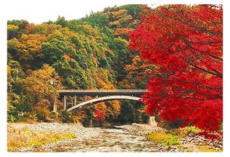 一般部門グランプリ『渓谷の彩色』