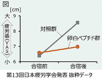 ランナーが疲労感の程度を長さで表した(キユーピー株式会社提供)