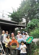 江戸期の古木から梅収穫