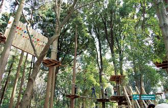 民間事業者によりアスレチック施設などが整備される里山ガーデン(写真は緑化フェア開催時)