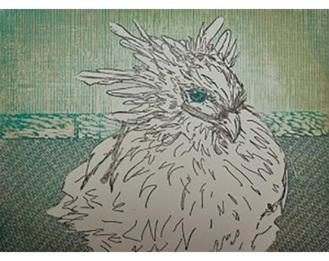 鈴木さんが手掛けた作品「ワンダーバード」