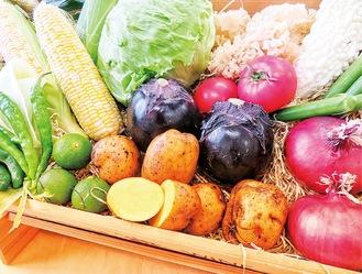 販売野菜のイメージ