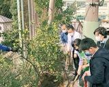 羽沢小で50周年記念植樹
