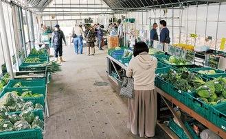 季節の野菜がずらりと並ぶ