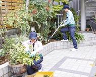 お庭の雑草対策!