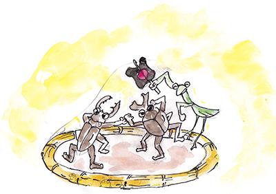 『森町の相撲大会』