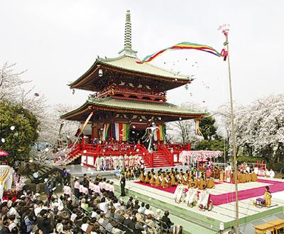 孝道山で花まつり