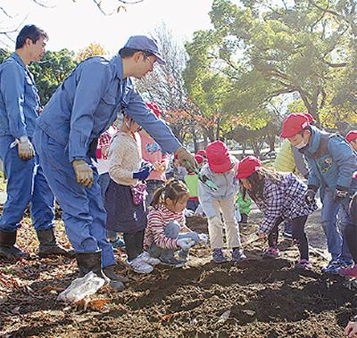 反町公園で球根植える