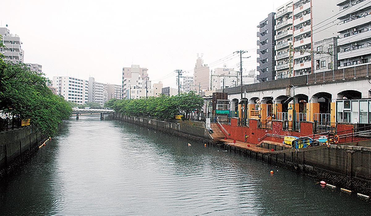 都会の川辺で遊ぶ