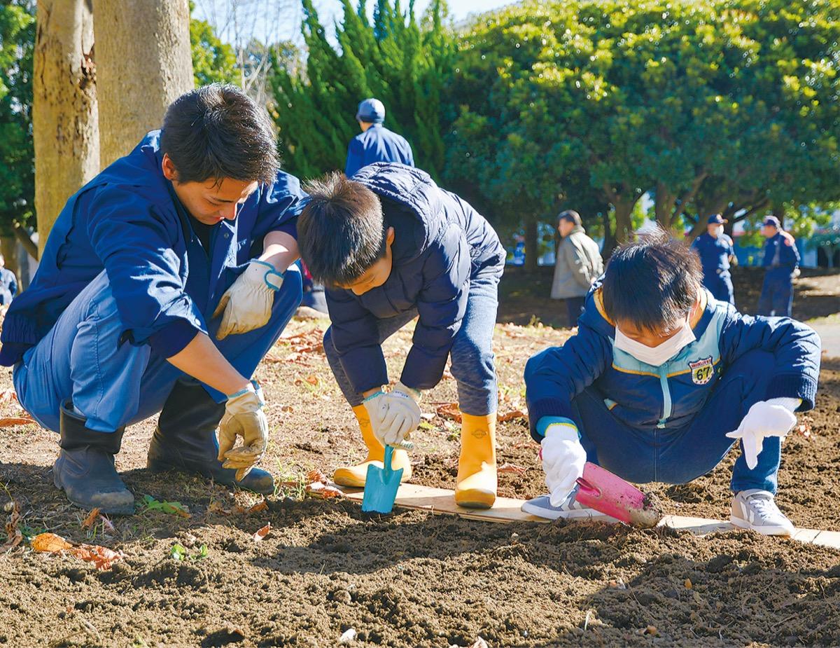 チューリップの球根を植える児童ら