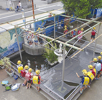 浄水ポンプで澄み渡った池を囲む児童ら