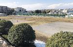 西長沢公園の多目的広場