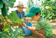 JAセレサ川崎の体験型農園新規利用者の説明会を開催