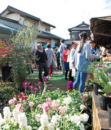 10回記念の花ノ停留祭
