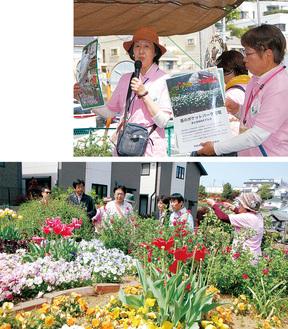 活動の紹介をする河井さん(左)と細谷さん(右)。下は会場となったコミュニティガーデンの花壇