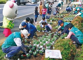 色とりどりの花を植える参加者
