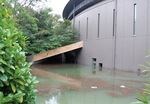 浸水した市民ミュージアム(昨年10月14日)