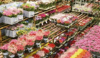 ずらりと並ぶ花々=同社提供画像=