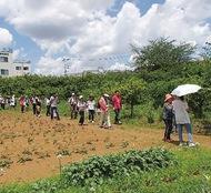 「農家巡り」参加者募集