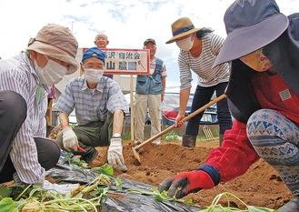 看板設置や畝づくり、植え付けなど率先して行う参加者