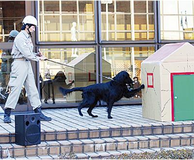 防災フェアに救助犬出動