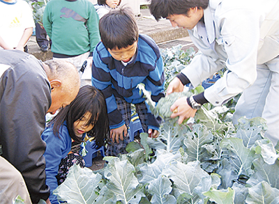 ブロッコリー収穫祭
