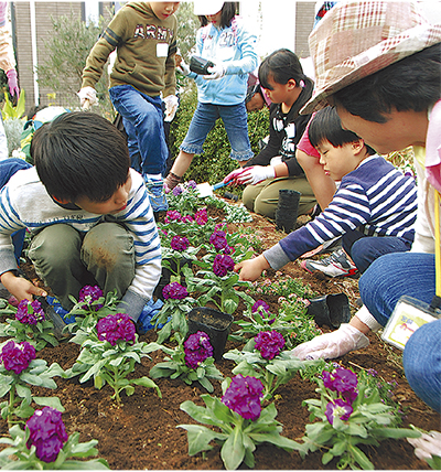 冬を彩る花を植えていく参加者