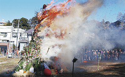 勢い良く燃え上がった東名犬蔵公園でのどんど焼き
