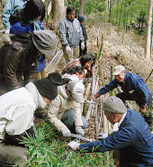 健康の森で竹伐採(過去)