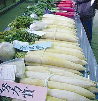 大根・白菜など新鮮な野菜が並ぶ品評会