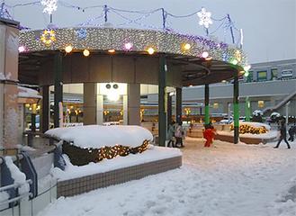 冬の訪れを告げるイルミネーション(昨年)