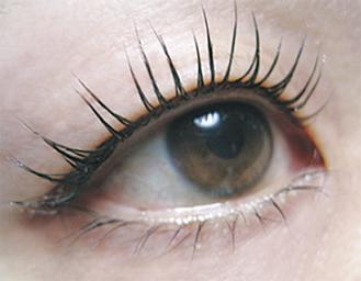 まつ毛が短い人もOK。「理想の瞳に近づけるため、カウンセリングをじっくり行います」