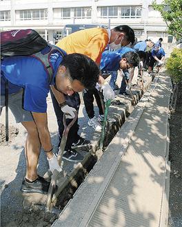 側溝の汚泥を取り除く参加者ら