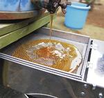 分離機で絞ったハチミツ