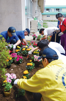 生徒と一緒に色彩豊かな花を植えていく