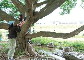 多摩川河川敷の自然を利用する