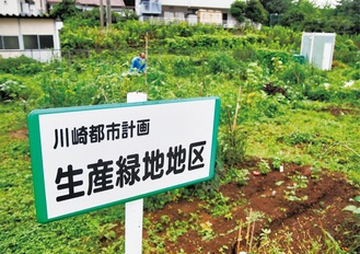 市民農園として活用される生産緑地