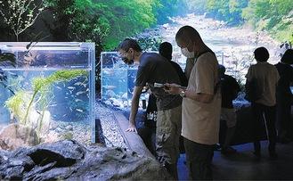 カワスイを訪れる観光客