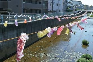 平瀬川の上を舞う鯉のぼり=4月26日撮影