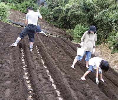 「収穫が楽しみ」