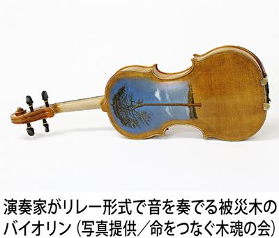 被災木材のバイオリンで