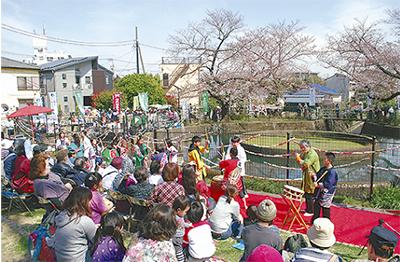 桜と共演を楽しむ