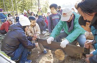 小さな子どもたちが大きな鋸を使って丸太切りに挑戦